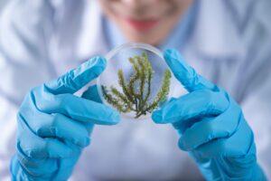 Nauka o organizmach żywych