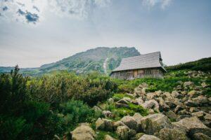 Krajobrazy górskie